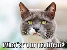 WHAT'S YOUR PROBLEM?到底是什么意思?
